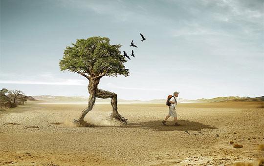 Niesamowite fotomanipulacje - inspiracje