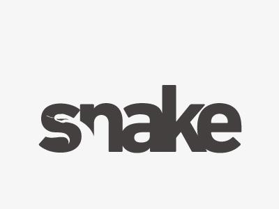 abdallah-ahizoune-snake