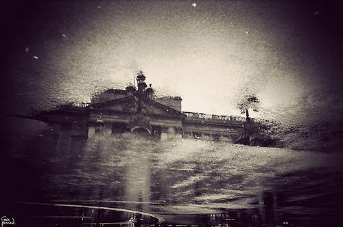 hammond london in puddle