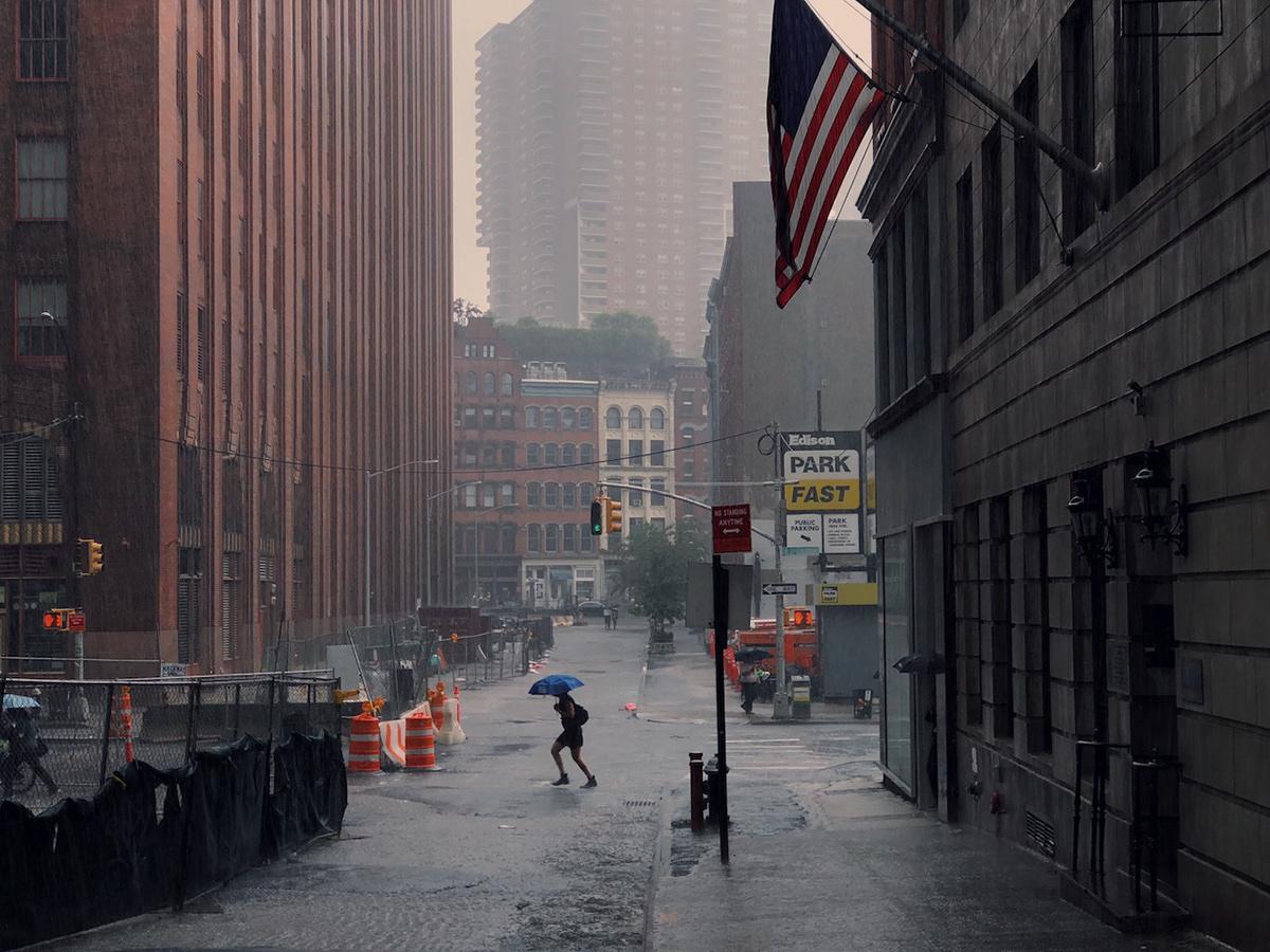New York Observations Eric Van Nynatten