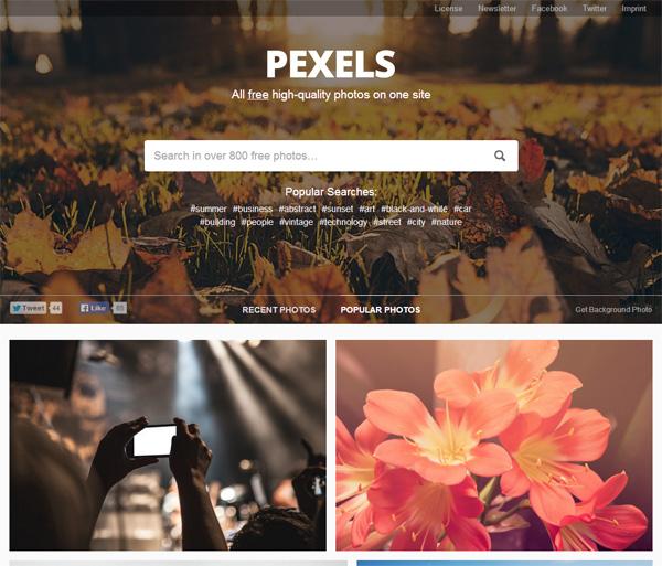 pexels darmowe zdjęcia na bloga